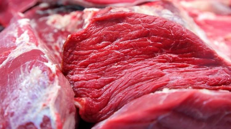 أطباء أتراك يحذّرون من الإفراط في تناول اللحوم خلال العيد
