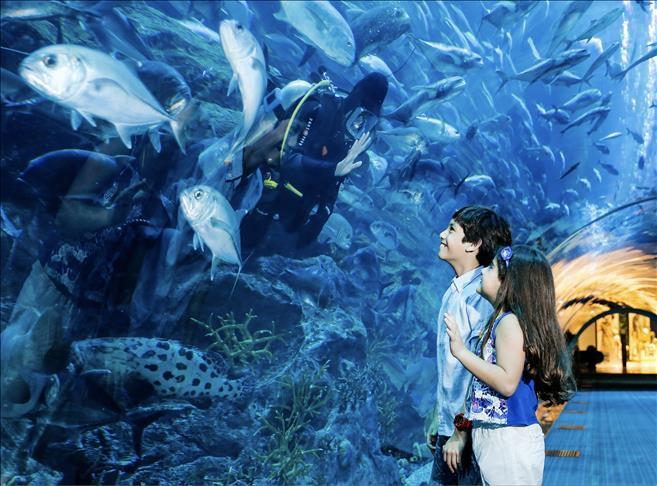 حدائق الحيوان والأحياء المائية وجهة مفضلة للأطفال بإسطنبول