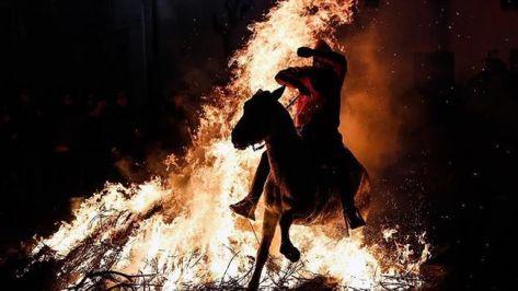 خيول إسبانية تناطح النيران..!