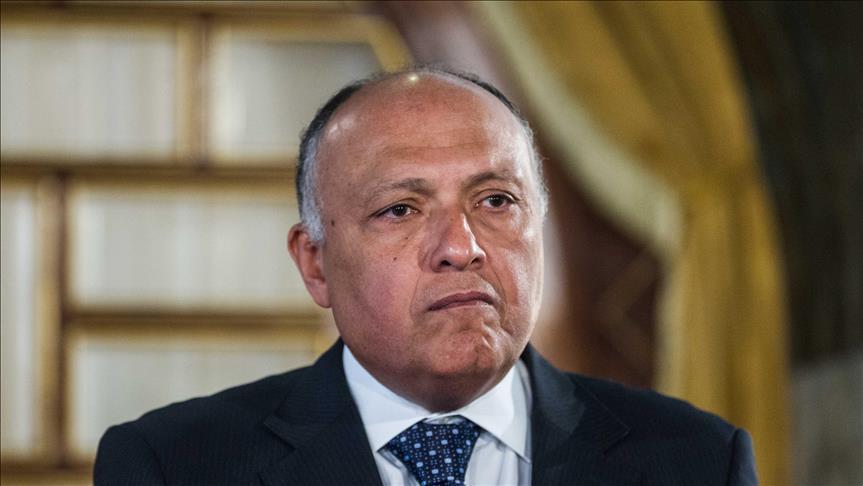 شكري: مصر أجرت تعديلات تشريعية لتسهيل الضمانات الاستثمارية