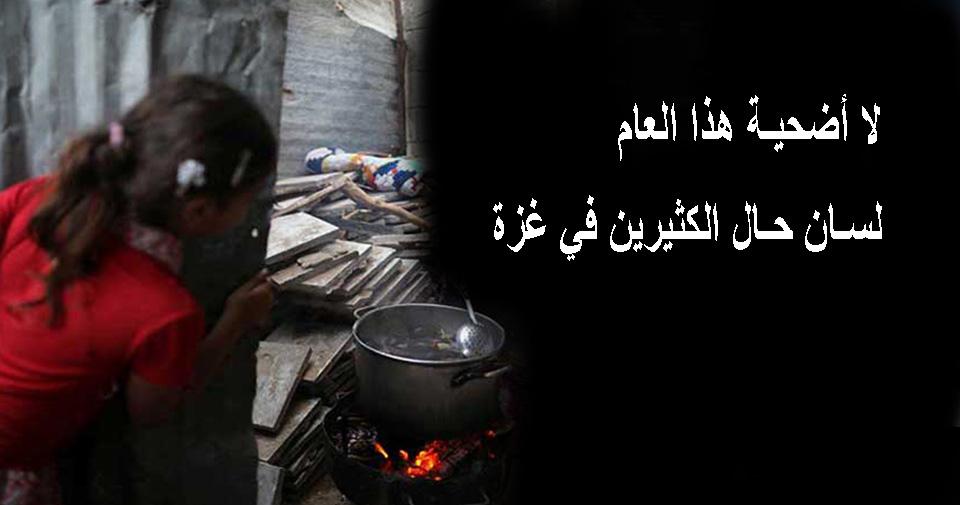 لا أضحية هذا العام.. لسان حال الكثيرين في غزة