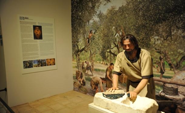 متحف عنتاب التركية.. يختزل تاريخ البشرية