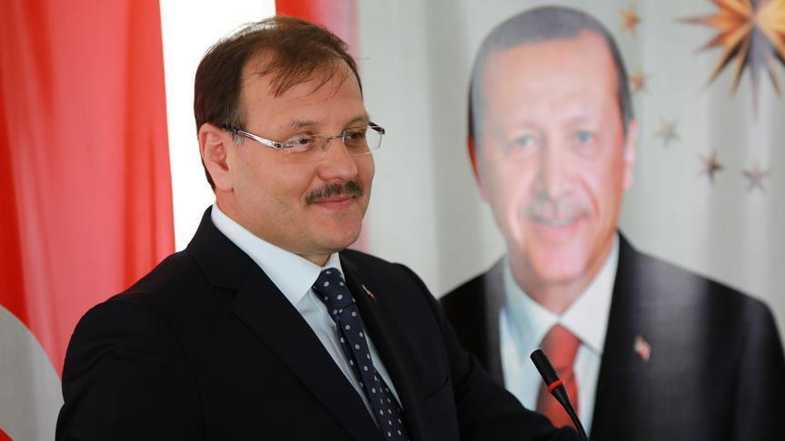 """نائب رئيس الوزراء التركي: """"غصن الزيتون"""" تتواصل حتى النهاية بكل عزم وإصرار"""