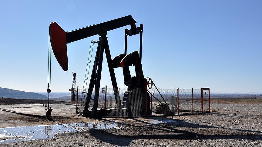 """وزيرا النفط الروسي والسعودي يجريان محادثات قبيل اجتماع """"أوبك"""""""