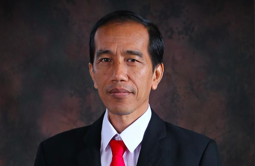 ويدودو: هناك إمكانات تعاون هائلة بين إندونيسيا وتركيا