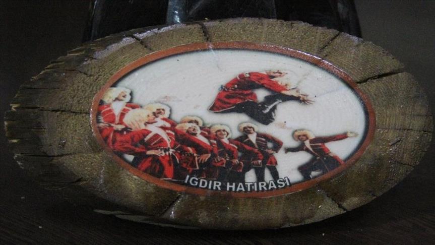 """المشمش رمز """"إغدير"""" التركية وأشجاره رسولها للعالم"""
