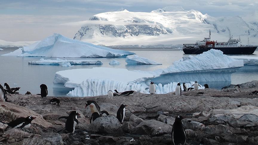 281 % نسبة الزيادة السنوية لذوبان الجليد في أنتاركتيكا