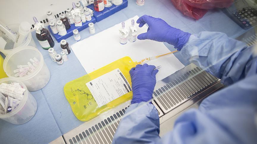 7 مضادات حيوية طبيعية تكافح البكتيريا